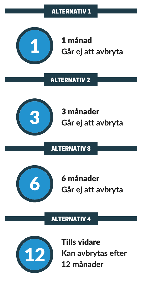 spelpaus alternativ info-grafik
